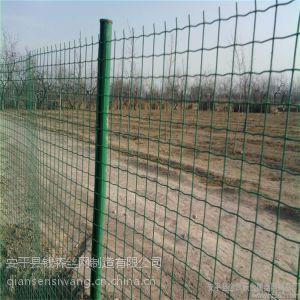厂家直销现货供应涂塑荷兰网厂家养殖网农田鱼塘围网