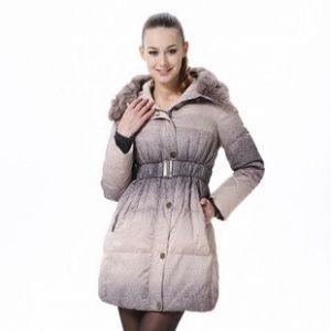 供应2011秋冬新款 波司登羽绒服正品 渐变色修身中长款女 BR2294