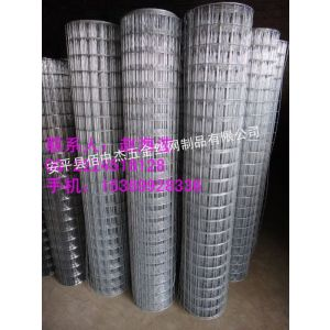 长期供应热镀锌电焊网、电镀锌电焊网