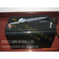 供应三瑞蓄电池--西北办www.xasenry.com