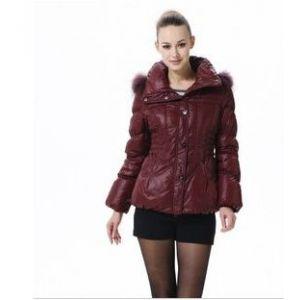 供应2011秋冬新款 波司登羽绒服正品 女士毛帽大众修身短款 BR2260