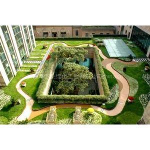 供应长沙草字头专业提供屋顶绿化