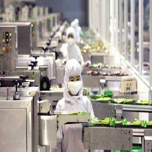 供应食品厂灭鼠杀虫 专业杀虫服务 高端大气上档次