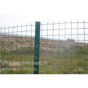 供应供应山东养羊围栏养殖,山东养鸡铁丝网围栏,山东养羊铁丝网批发