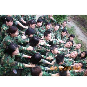 供应鹰雁巅峰团队训练营---责任、荣誉、团队