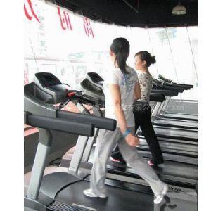深圳少儿跆拳道,健身私人教练,【动力时尚】