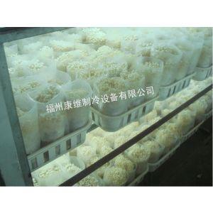 供应福州食用菌冷库安装(金针菇、杏鲍菇、蘑菇、香菇、茶树菇、猴头菇、木耳菇)