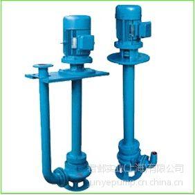 YW液下式排污泵,YW排污泵厂家,君邺不锈钢液下泵