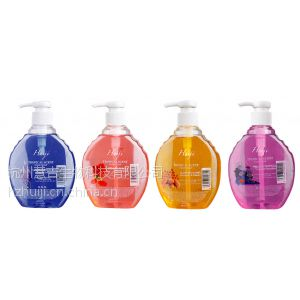 供应杭州慧吉2014年厂家直销新款瓶装500g洁净洗手液