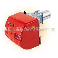 供应浙江杭州进口利雅路RLS28油气两用双燃料燃烧器