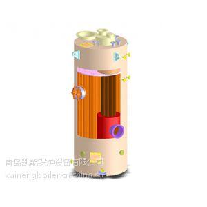 供应ZYS型立式针形管组合锅炉