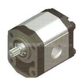供应P97系列高压齿轮泵