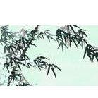 供应广州印刷厂,广州广志设计印刷有限公司