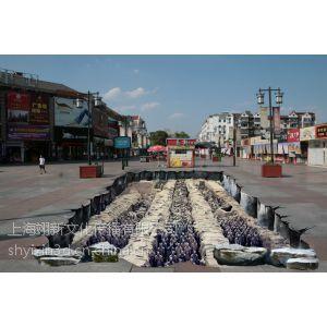 供应山西3D立体壁画、3D立体地画、原创3D广告设计制作