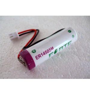 供应ER14505M预付费智能水表用电池