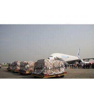 供应迪拜空运价格-国迪拜际空运价格