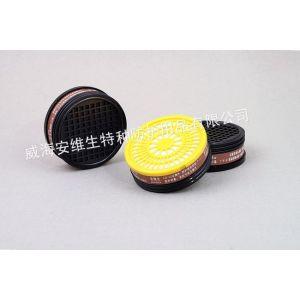 供应供应安维生专业防毒防尘面具高级进口
