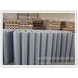 供应电焊网 镀锌电焊网 电焊网片 电焊网厂家