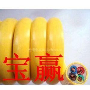 供应供应4x0.5平方 4x0.75平方 4x1平方 PVC PU 弹簧线 螺旋线 曲线