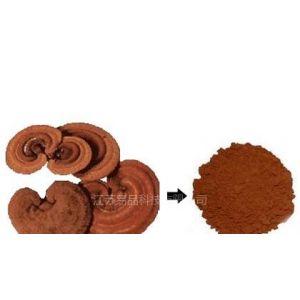 灵芝破壁孢子粉 优质的原料药