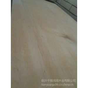供应防水胶合板生产厂家 桉木胶合板,临沂海洋板多层板厂家