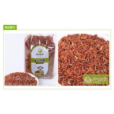 供应大地农仓 产地直销 五谷杂粮 红米 红米批发 红米产地批发 红米价格