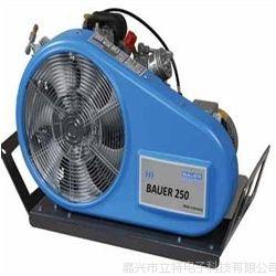供应移动式压缩机宝华200/250/300 - TE