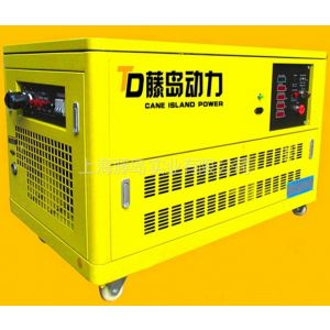 供应15KW静音汽油发电机组 天然气汽油发电机藤岛动力