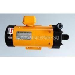 供应世博PANWORLD耐腐蚀磁力泵NH-10PX-N