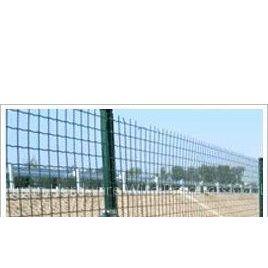 供应Wire Mesh Fence