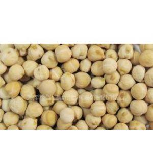 供应鹰嘴豆