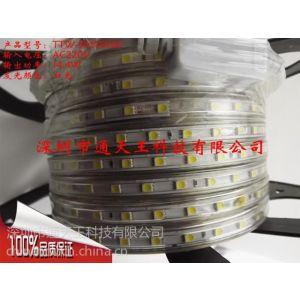 供应LED灯带光源220V5050贴片超高亮灯带灯条吊顶灯60株/1米白光