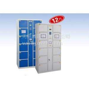 供应湖南·长沙地区直发/成霖牌电子寄包柜/点阵式液晶显示屏/热敏打印机