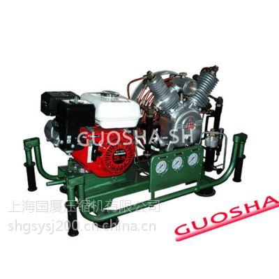 国厦30mpa小型便携式国产潜水呼吸专用高压空气压缩机(呼吸器充气泵充气机充填泵填充泵)