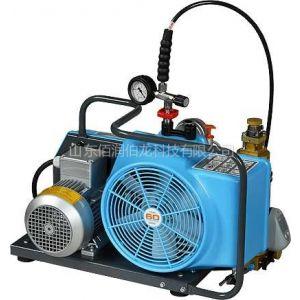 供应濮阳空气压缩机juniorII-3E-H  宝亚空气填充泵