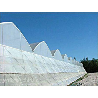 气培种植温室 新型气培种植温室建设价格