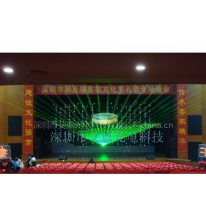 供应艾恩15W大功率单绿色激光灯租赁销售