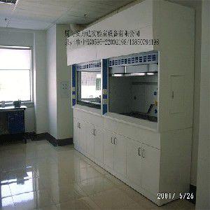 供应实验台/通风柜/实验室设备/实验室家具-厦门安力实验设备有限