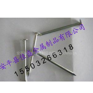 供应专业生产铁钉、瓦楞钉、水泥钢钉
