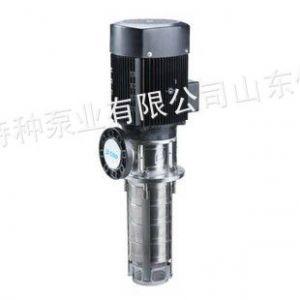供应CNP牌南方泵业机床用浸入式不锈钢液下泵,浸入式多级离心泵山东,江苏,河南销售