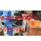 供应上海上海徐汇区徐家汇管道疏通环卫抽粪清洗污水管道50917081