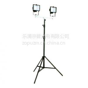 供应GAD513升降式照明装置