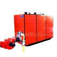 供应天然气热水锅炉洗浴供暖