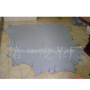 供应专业皮料包税进口清关服务 香港-珠三角