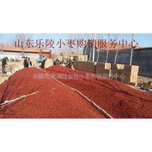优质乐陵红枣批发产地金丝小枣供应代收