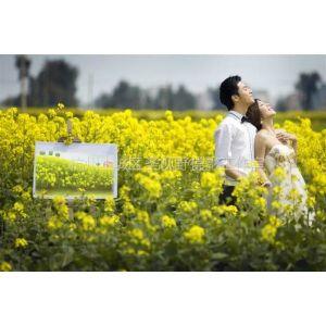 供应圣摄影工作室杭州西湖婚纱照多少钱杭州西湖外景婚纱照