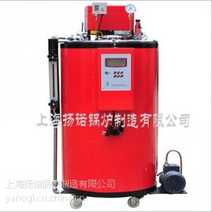 供应35kg/h国家免检燃油蒸汽锅炉烧热水、蒸饭菜