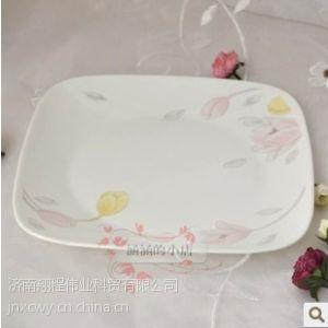 供应美国康宁玻璃餐具 郁金香 方形10寸平盘(2213-EC)专柜正品热卖