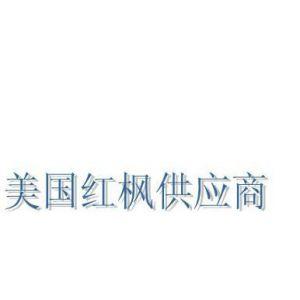 潍坊美国改良红枫的价格 潍坊便宜美国改良红枫 风和日丽【优质】