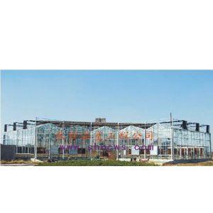 供应生态阳光餐厅 农业示范园温室大棚
